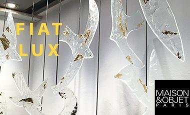 Visueel van project Fiat Lux