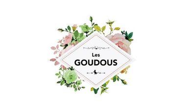 Project visual Les Goudous - La Websérie