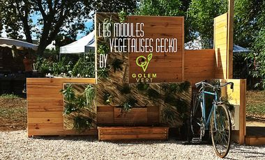 Project visual les modules végétalisés GECKO by golem vert