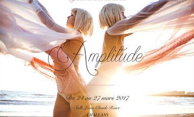 Project visual Expo Amplitude