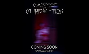"""Project visual """"Cabinet of Curiosities"""" Photography Exhibition"""