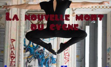 Project visual La nouvelle mort du cygne