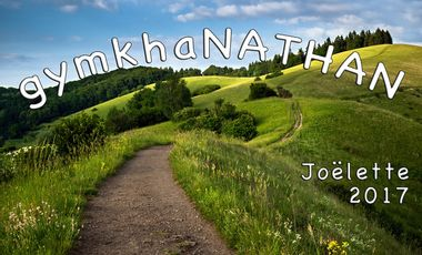 Project visual gymkhaNATHAN