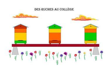 Project visual Des ruches au collège