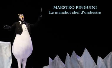 Visueel van project Maestro Pinguini, le manchot chef d'orchestre