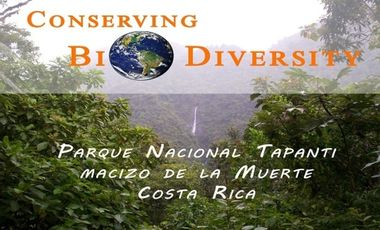 Visueel van project Conserving Rainforest - Costa Rica