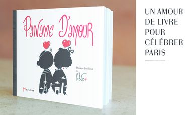 Project visual Paname d'amour