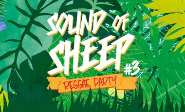 Visuel du projet Festival Sound of Sheep #3 Reggae Party