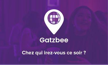 Project visual Gatzbee