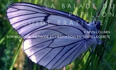 """Visueel van project """"La balade du Papillon"""" Aidez-le à s'envoler !"""