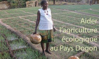 Visueel van project Agriculture écologique au Pays Dogon