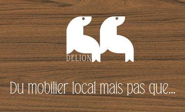 Visueel van project Delion, du mobilier local mais pas que...