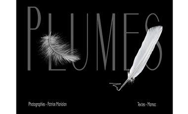 Visueel van project PLUMES
