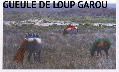 Visueel van project GUEULE DE LOUP GAROU