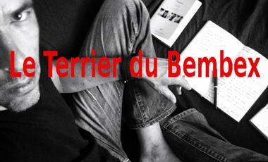 Project visual Le Terrier du Bembex