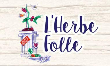 Project visual L'herbe folle,l'épicerie autrement!