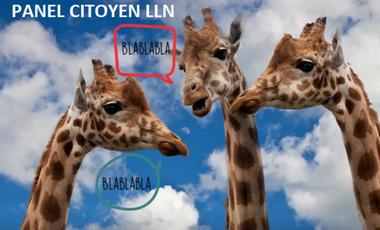 Visueel van project Panel Citoyen LLN