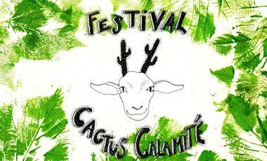 Visueel van project Festival Cactus Calamité