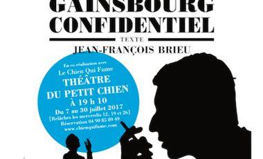 Project visual Gainsbourg Confidentiel
