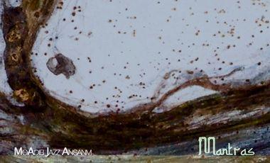 Visueel van project MoAdib Jazz Ansanm (MAJA)