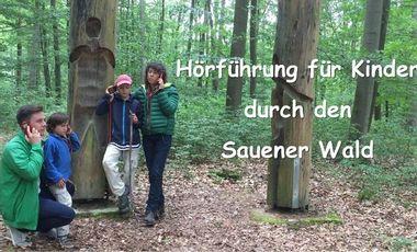 Project visual Hörführung für Kinder durch den Sauener Wald