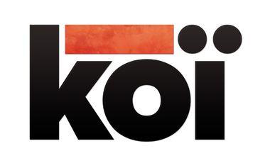 Project visual Koï