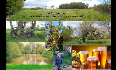Visuel du projet La Chrysalide - Micro-ferme, forêt comestible et micro-brasserie