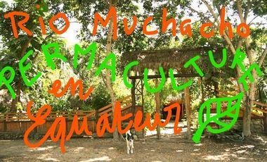 Project visual SGDF-Rio Muchacho: Développer la permaculture en Equateur