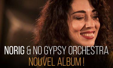 Visueel van project Norig Nouvel Album