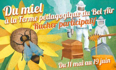 Visueel van project Du Miel à la Ferme Du Bel Air !