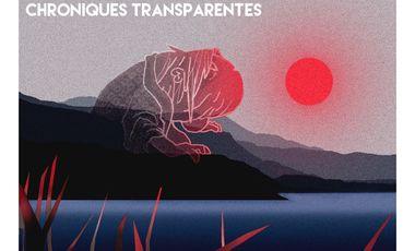 Visuel du projet Les chroniques transparentes, court métrage