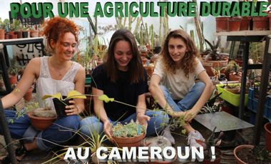 Project visual Mission pour une agriculture durable au Cameroun
