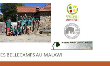 Visueel van project Projet solidaire environemental au Malawi