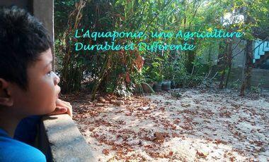 Project visual Culture autonome d'aquaponie au Laos