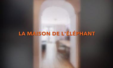 Visueel van project LA MAISON DE L'ÉLÉPHANT - RENCONTRONS-NOUS ! - BARCELONE - CORRIDOR ELEPHANT