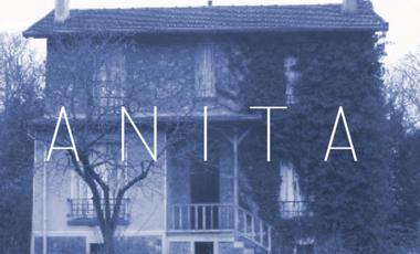 Visueel van project ANITA