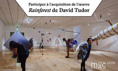 Visueel van project Acquisition of David Tudor's Rainforest