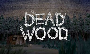 Visueel van project Dead Wood