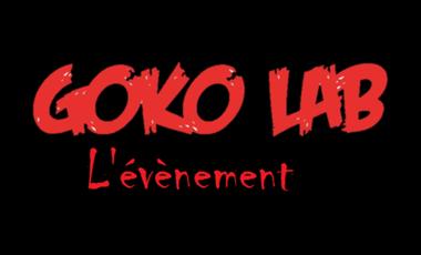 Visueel van project Goko Lab