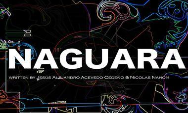 Visueel van project Naguara