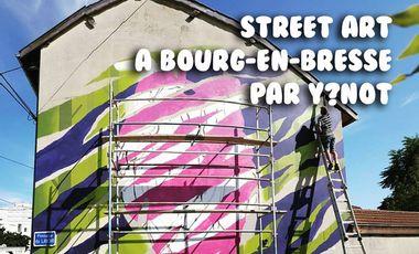 Project visual Street art à Bourg-en-Bresse