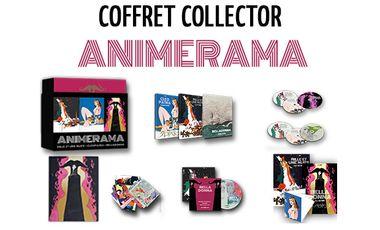 Project visual COFFRET COLLECTOR ANIMERAMA