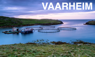 Visueel van project Vaarheim