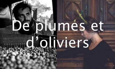 Project visual De plumes et d'olivers