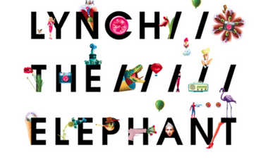 Project visual Lynch The Elephant - Nouvel EP Pieces
