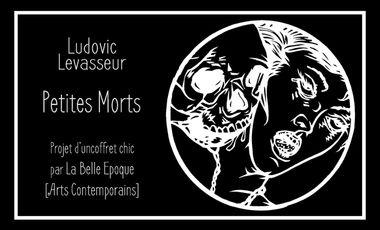 Visuel du projet Petites Morts, coffret de Ludovic Levasseur.