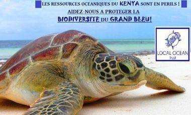Visueel van project Protection des ressources océaniques du KENYA