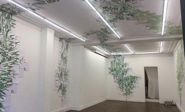 Project visual Aide à l'installation d'une œuvre donnée à une fondation écologique