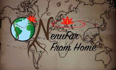 Project visual NenuFar From Home