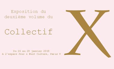 Visueel van project Exposition du Collectif X !